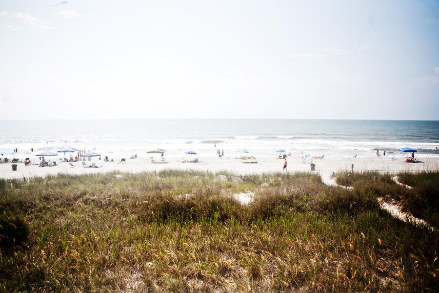 South Carolina - hibou photo, photographer