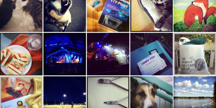 Month in Review: September 2013