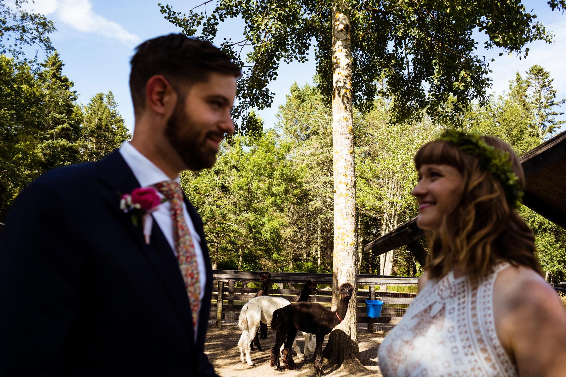 029-st-andrews-kingsbrae-gardens-wedding-photography-kandisebrown-gc2018