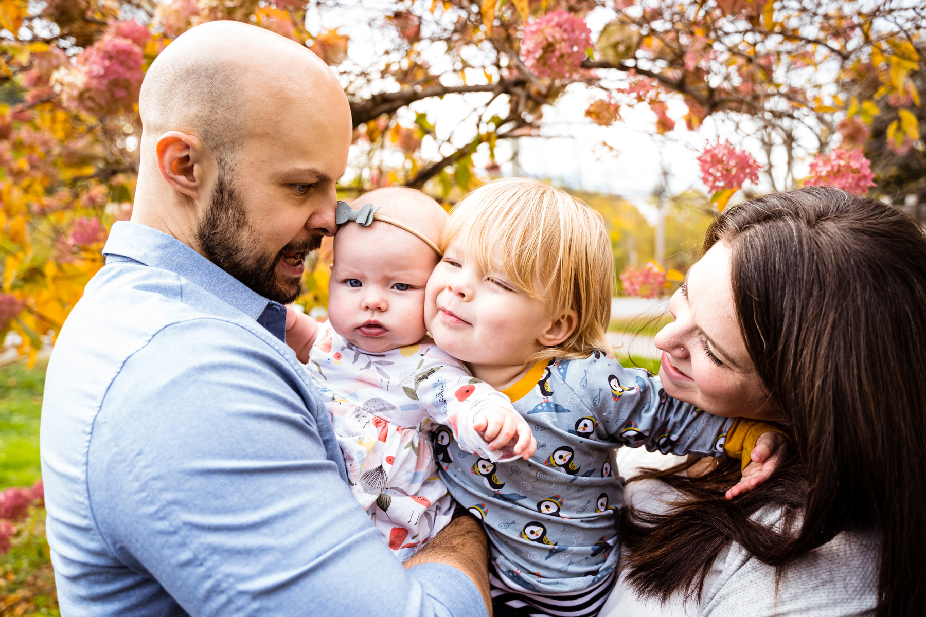 fredericton-family-portraits-sbgf2019-015